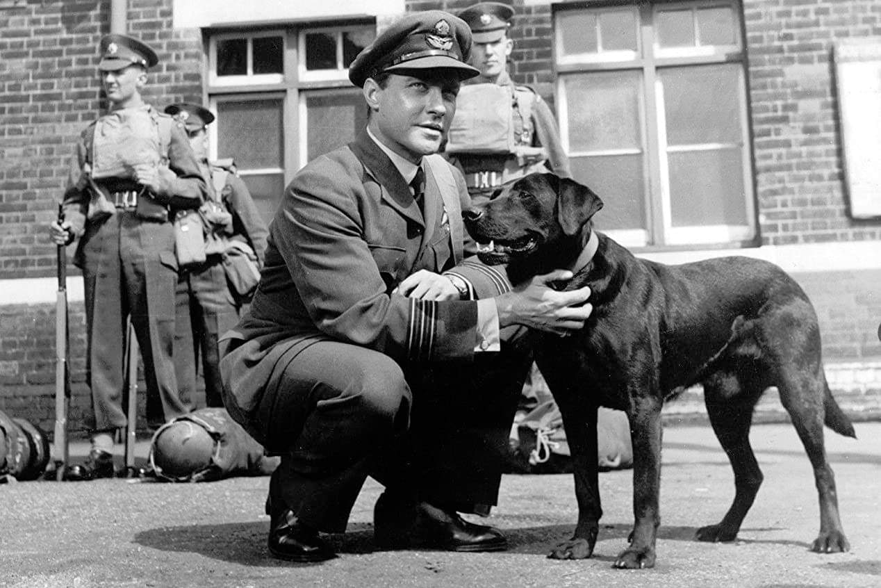 What was the dambusters dog name?
